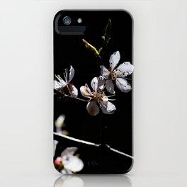 Sakura flowers on black 02 iPhone Case
