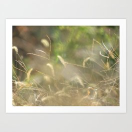 Nature Is My Greatest Inspiration Art Print