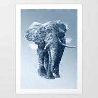 Ourea Art Print