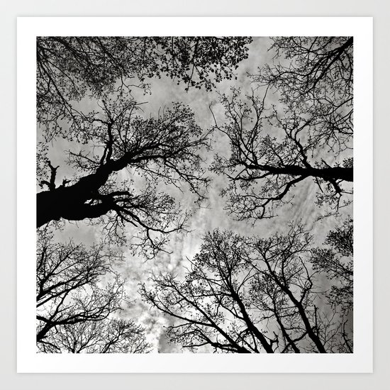 Meditative Power of Trees Art Print
