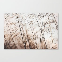 winters  Canvas Print