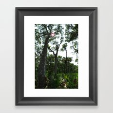 Vertical Panorama  Framed Art Print