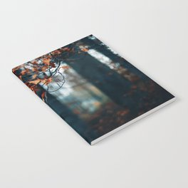 Hibernation Notebook