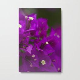 flower 4 Metal Print