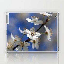 Weißdorn Laptop & iPad Skin