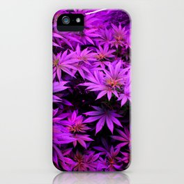 Colorado Marijuana LED Grow Lights iPhone Case
