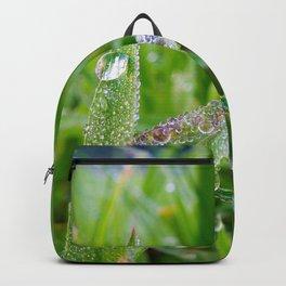 dewy embrace Backpack