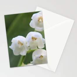 Bloomed White Flower Close-Up Stationery Cards