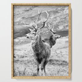 Stags - b/w Serving Tray