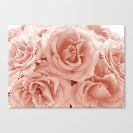 Bunches Canvas Print