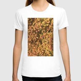 Japanese Maple Fall Leaves T-shirt