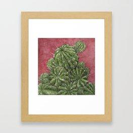 mexican cactus Framed Art Print