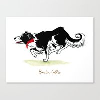 border collie Canvas Prints featuring Border Collie by Monica McClain