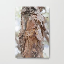 tree trunk in sacsayhuaman Metal Print