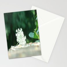 Queen Anne's Lace w/ bokeh Stationery Cards