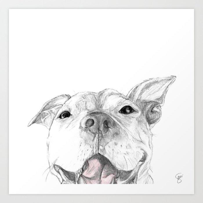 Whaddup :: A Pit Bull Smile Kunstdrucke