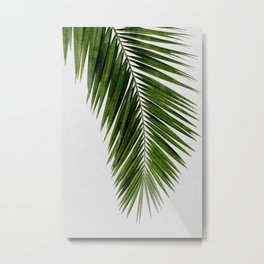 Palm Leaf I Metal Print