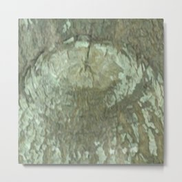 Oak Tree Eye Camo Metal Print