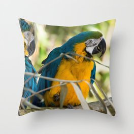 Parrots couple in the tree tops Throw Pillow