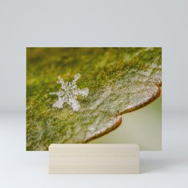 Lone Crystal. Macro Photograph Mini Art Print