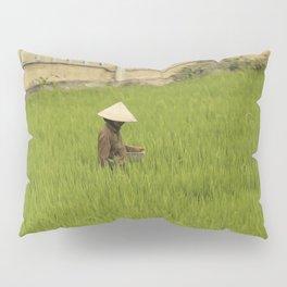 Rice Fields, Vietnam Pillow Sham