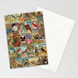Birds of America 19th-century Illustrations Stationery Cards