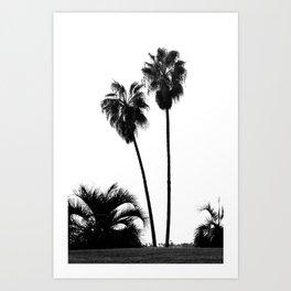 Tropical Darkroom #161 Art Print
