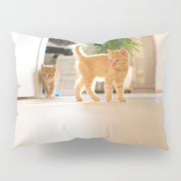 Cat by Jonathan Wiemers Pillow Sham