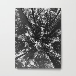 View Under the Canopy Metal Print