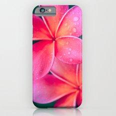 Aloha Hawaii Kalama O Nei Pink Tropical Plumeria iPhone 6 Slim Case