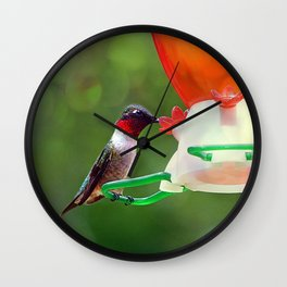 Ruby Throated Hummingbird Wall Clock