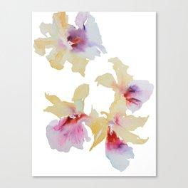 Cream Orchids Canvas Print