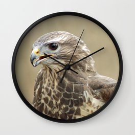 magnificent falcon Wall Clock
