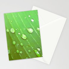 Jungle Drops. Stationery Cards