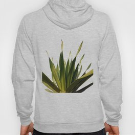 Palm Leaves #5 Hoody