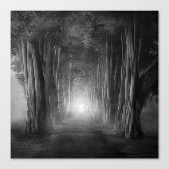 Black and White - Dreams come true Canvas Print
