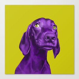 The Dogs: Guy Canvas Print