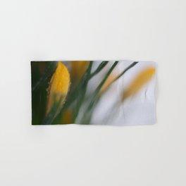 yellow crocus in spring Hand & Bath Towel