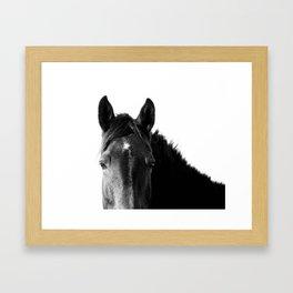 Horse in Black and White Framed Art Print