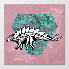 Stegosaur Fossil Canvas Print