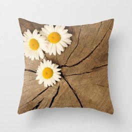 Daisies on wooden background Throw Pillow