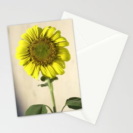 Concrete Mirror Stationery Cards
