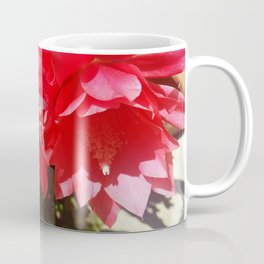 Orchid Cactus Coffee Mug