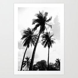 Palm Tree Noir #65 Art Print