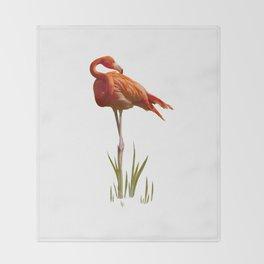 The Florida Flamingo Throw Blanket