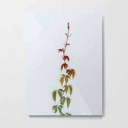 LEAVES IN THE HOUSE Metal Print