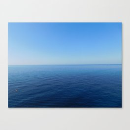 naturalGradient Canvas Print