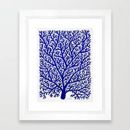 Fan Coral – Navy Framed Art Print