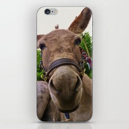 DONKEY WHY THE LONG FACE? iPhone Skin