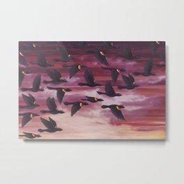 red-winged blackbird flock in flight Metal Print
